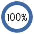 Pie chart graphic indicating 100%